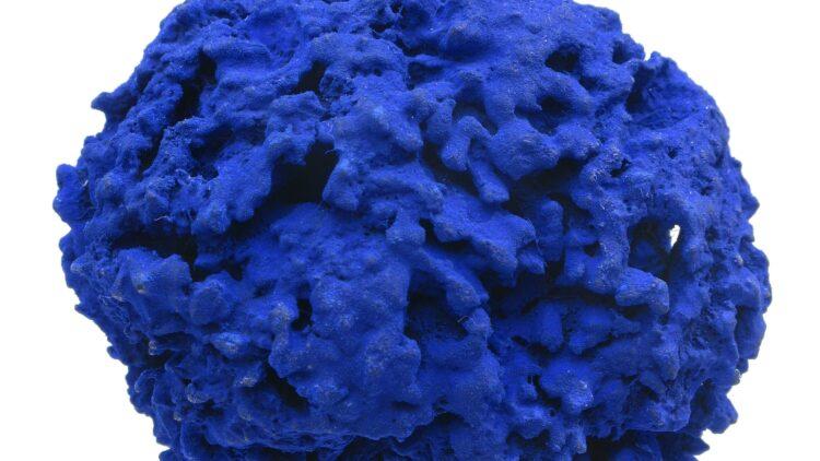 Klein Eponge bleue Ansicht 07 366074 d