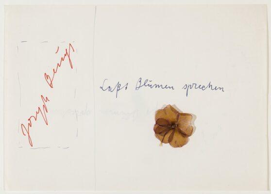Joseph Beuys - Laßt Blumen sprechen